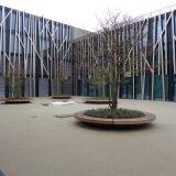 Neubau Maria-Ward Schule Nürnberg